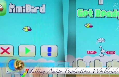AmiBird Review